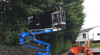 tree surgeon using a chipper after doing some hedge work